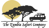 The Zambia Safari Company